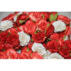 10 Carnations Red Mix