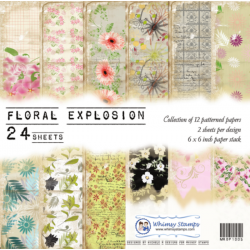Floral Explosions 6x6 Paper...