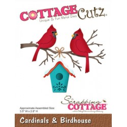 Cardinals & Birdhouse