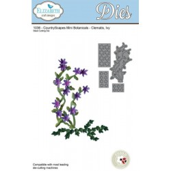 CountryScapes - Clematis, Ivy