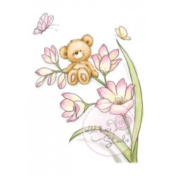 Bear on Flower