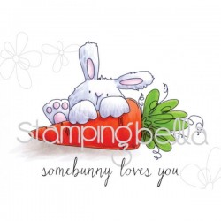 Somebunny Loves You Bunny...