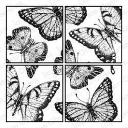 Butterfly Square